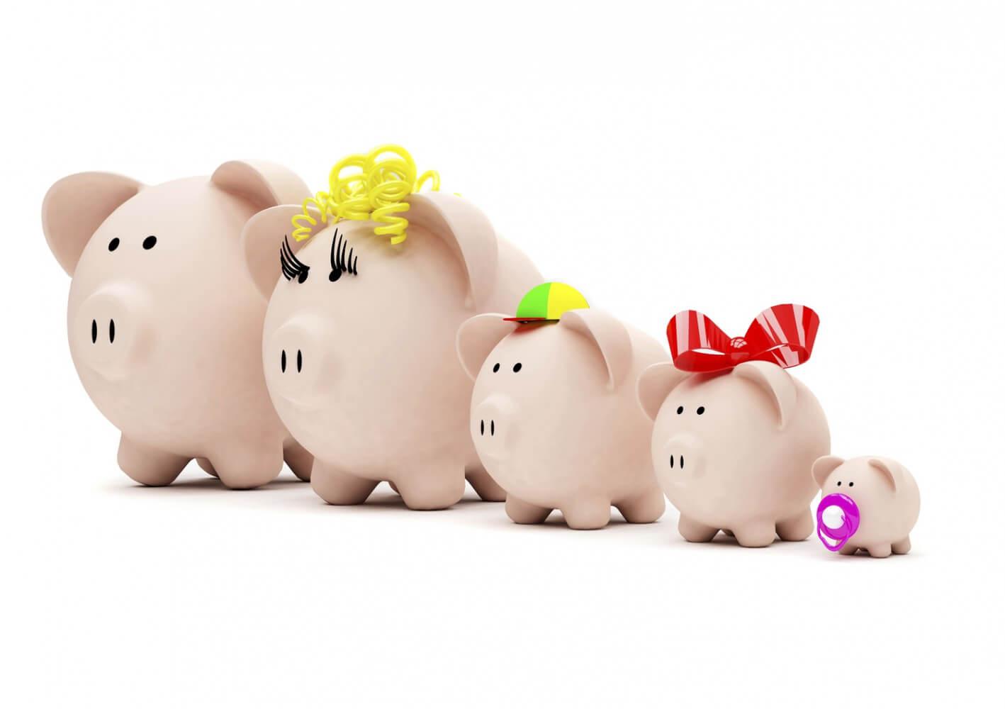 Как вести учет расходов и доходов дома